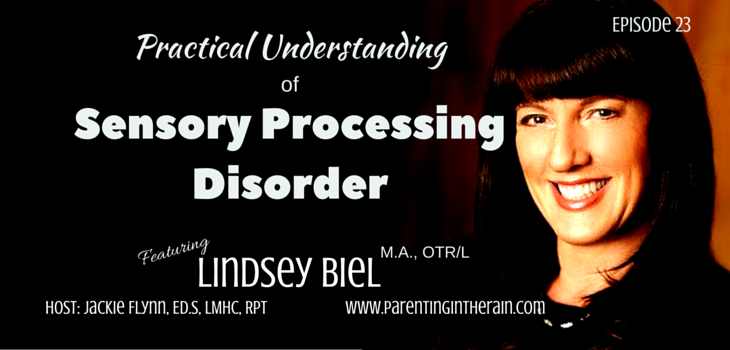 23: Practical Understanding of Sensory Processing Disorder